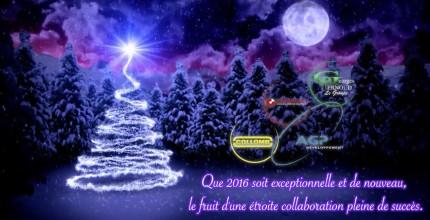 AGP Développement vous souhaite de bonnes fêtes de fin d'année